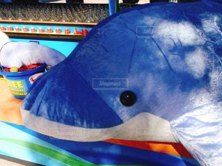 青いイルカのぬいぐるみの写真・画像素材[1099185]