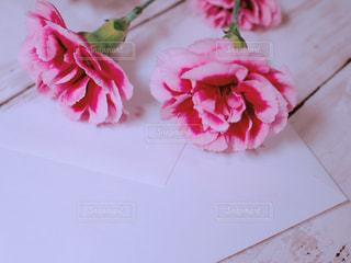 手紙とカーネーションの写真・画像素材[1135584]