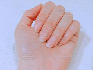 自爪の写真・画像素材[1501692]