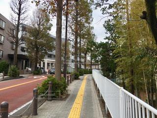 富士見台小学校周辺の写真・画像素材[1544441]