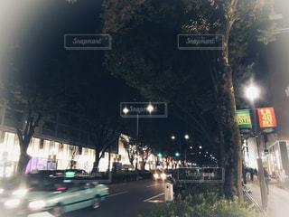 表参道の夜の写真・画像素材[1568601]