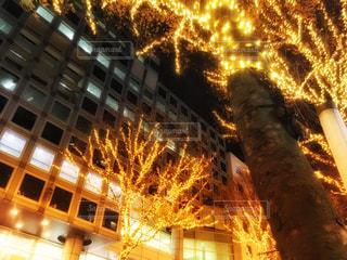 渋谷宮益坂のイルミネーションの写真・画像素材[1674780]