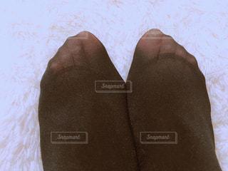 黒タイツの足先の写真・画像素材[1675916]