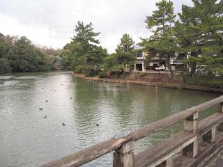 松江城のお堀の写真・画像素材[1801588]