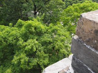 明孝陵(朱元璋の墓)の写真・画像素材[1819663]