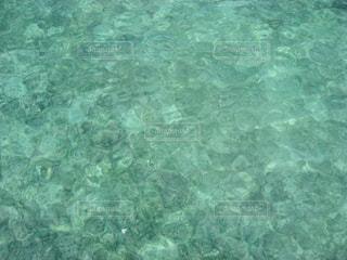 ニューカレドニアアメデ灯台島の浅瀬の写真・画像素材[1827669]