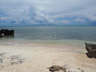 波照間島の浜シタン群落のビーチの写真・画像素材[2336992]