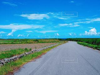 最南端の碑に行く途中の、海の見える道の写真・画像素材[2387421]