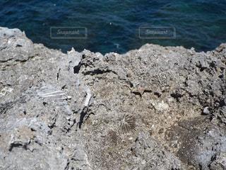 波照間島最南端エリアは珊瑚が隆起して出来た断崖絶壁で、化石も沢山あります。の写真・画像素材[2390171]