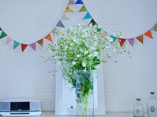 近くの花のアップ - No.1088839