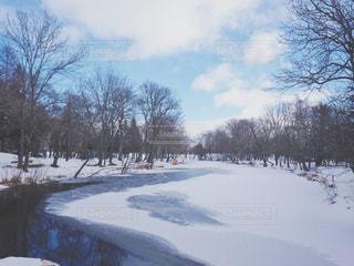 雪に覆われた川の写真・画像素材[1069334]