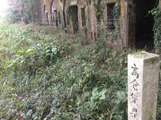 高倉堡塁跡の写真・画像素材[1078198]