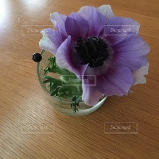 花の写真・画像素材[14671]