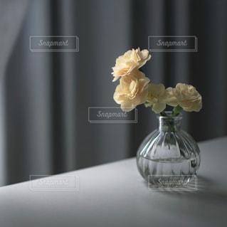 黄色のカーネーションの写真・画像素材[2323406]