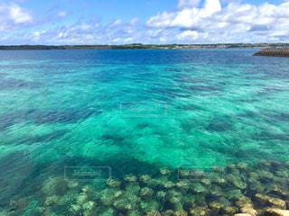 沖縄の青い海の写真・画像素材[1071479]