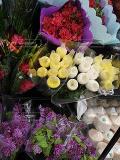 お花たちの写真・画像素材[1075353]