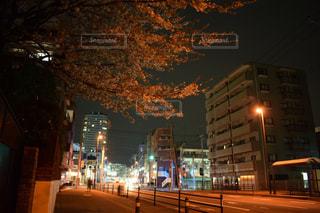 夜のライトアップされた街の写真・画像素材[1100765]