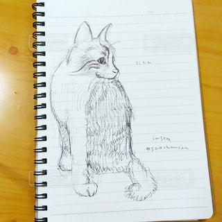 猫のイラストの写真・画像素材[1236615]