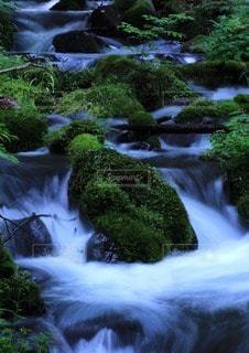 自然の写真・画像素材[35304]