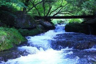 自然の写真・画像素材[39346]