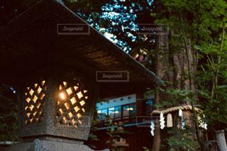 夜のライトアップされた街の写真・画像素材[1614870]