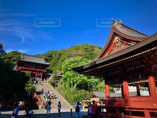 夏の鶴岡八幡宮の写真・画像素材[2258774]