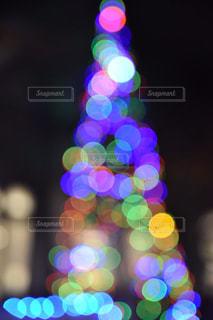クリスマスツリーの写真・画像素材[1073098]