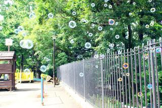 西荻窪周辺の公園にての写真・画像素材[1073965]
