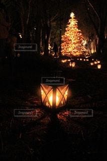 夜のライトアップされた街の写真・画像素材[1177196]