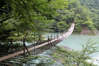 水の体の上の橋の写真・画像素材[1304134]