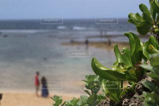 ビーチの写真・画像素材[1075086]