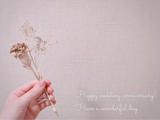 結婚記念日おめでとうの写真・画像素材[1163180]