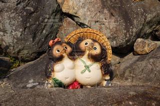夫婦のたぬきの置物の写真・画像素材[1074657]
