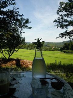 真夏のテラス席の写真・画像素材[1075606]