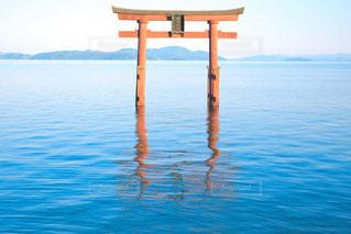 滋賀 白髭神社の写真・画像素材[1149020]
