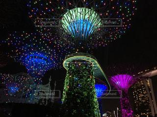 シンガポールの植物園のライトアップの写真・画像素材[1075400]