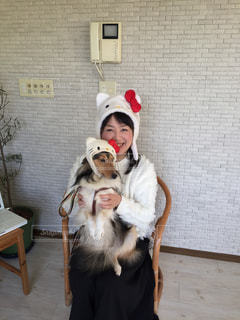 着ぐるみを着た犬の写真・画像素材[1077233]
