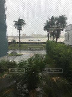 台風接近中の写真・画像素材[2473066]