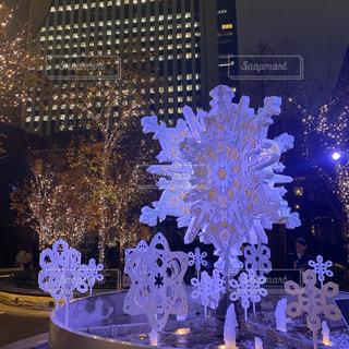 夜にライトアップされたクリスマスツリーの前の噴水の写真・画像素材[2813526]