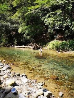 川遊びの写真・画像素材[4759415]
