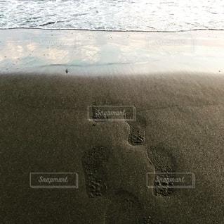 海に帰る夏の記憶 - No.1077600