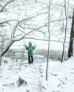 雪景色の写真・画像素材[1416903]
