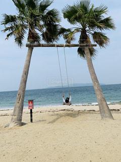 ヤシの木のある浜辺の人々のグループの写真・画像素材[2336365]