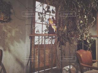 カフェの写真・画像素材[130915]