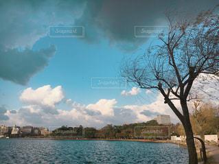風景の写真・画像素材[318204]