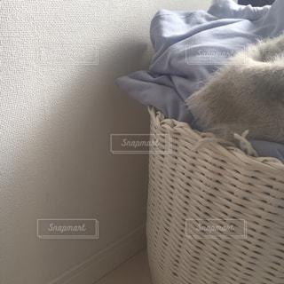 かごの中で眠っている猫の写真・画像素材[944211]