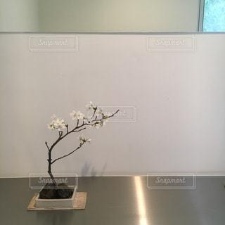 テーブルの上に座って花の花瓶の写真・画像素材[1124924]