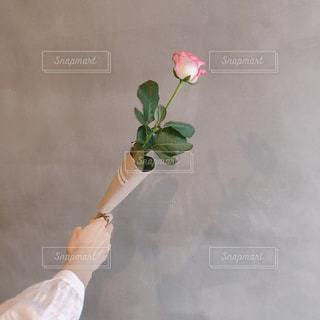 花瓶の花でいっぱいの写真・画像素材[1523156]