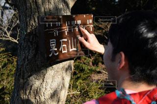 太平山〜晃石山の写真・画像素材[1080167]