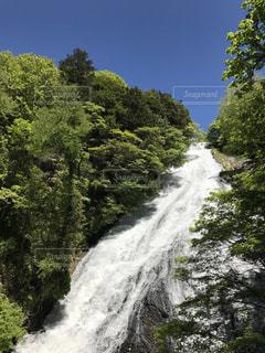 日光 湯滝の写真・画像素材[1080354]